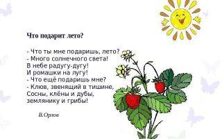 Стихи про лето для детей 5-6-7 лет