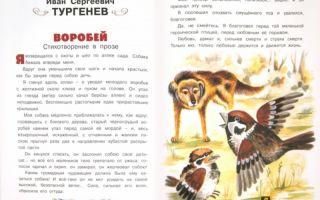 Воробьев «возвращение на аэродром» читать текст