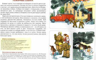 Конспект занятия по развитию речи в старшей группе. пересказ художественного произведения толстой «пожарные собаки»