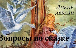 Андерсен «дикие лебеди» распечатать текст полностью