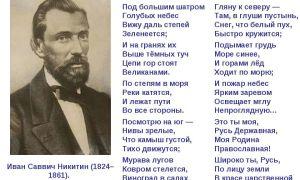 Никитин «русь» стихотворение текст
