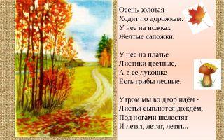 Стихи об осени для дошкольников 5-6 лет