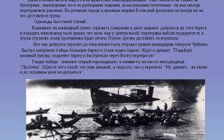 Богомолов. рейс «ласточки»