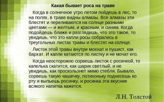 Толстой «какая бывает роса на траве» читать