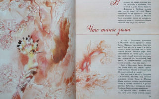 Наталья абрамцева «что такое зима» читать