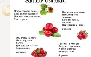 Загадки про ягоды для детей 5-6-7 лет с ответами