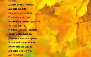 Стихи про осень для начальных классов