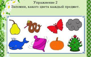 Игры на развитие памяти и внимания у детей 2-3 лет