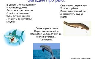 Загадки про рыб с ответами для 1 класса