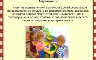 Игры на развитие познавательной активности у детей 1-2-3 лет