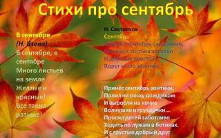 Стихи про сентябрь для дошкольников