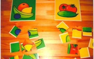 Развивающие игры на развитие психологической устойчивости детей 2-3-4 лет