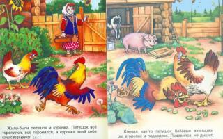 Сказка «петушок и бобовое зёрнышко». читать