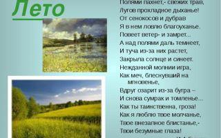 Стихи о лете русских поэтов для 3 класса